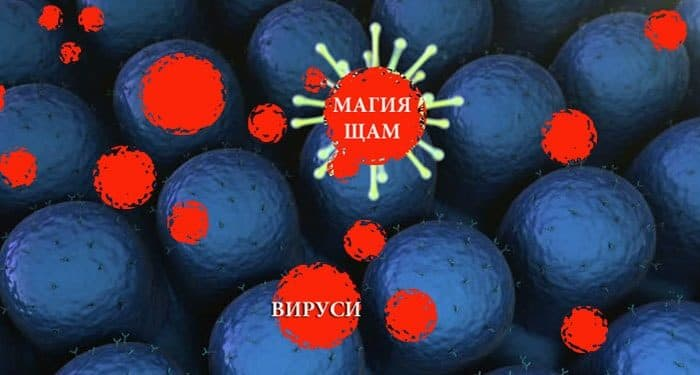 магията е негативна програма за вируси