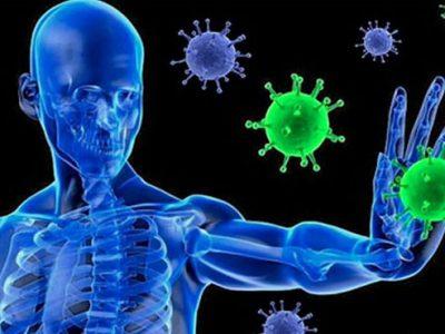 Имунните системи в нас